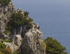 Capri, la beauté du site